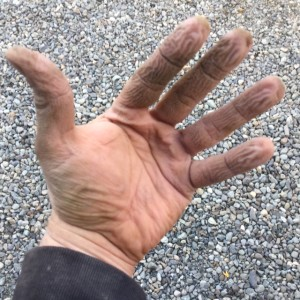 This is how your hands looks after working with concrete and not being well protected.